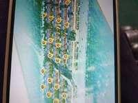出售越溪乡住宅 非小区 3室2厅2卫120平米65万住宅