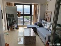 出租自在城 精装修单身公寓1室1厅1卫55平面议住宅