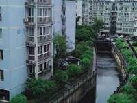 出租华山花园145平方套房