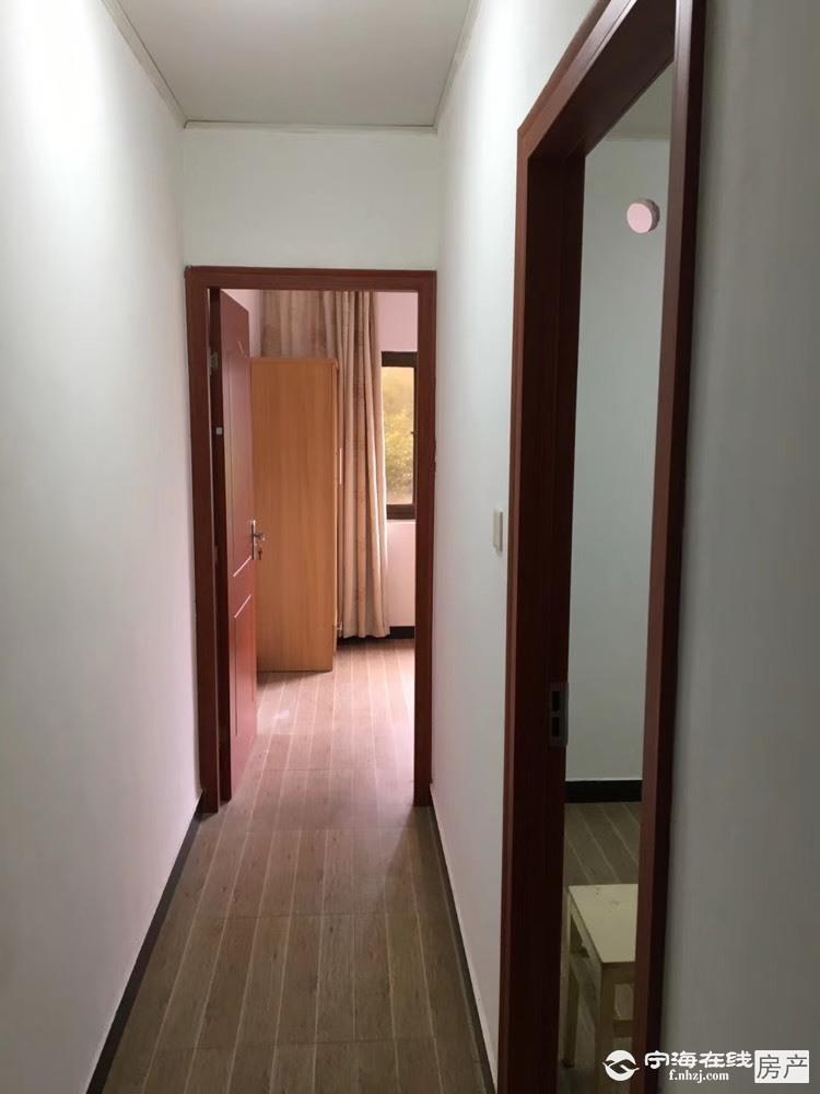 出租跃龙街道住宅 非小区 35平米1000元/月住宅