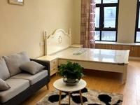 金山国际55平方1室1厅1卫精装修62万