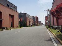 出售力洋镇开发区厂房10间2层1200平米580万商铺